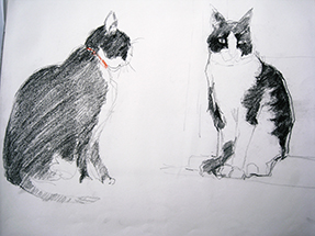 Animal_Cats_sketch