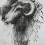 Animal5_drawing